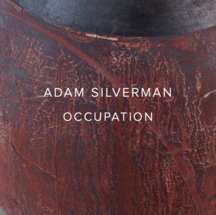 Adam Silverman: Occupation - Publications