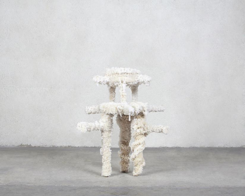 Bleached (I), 2018 Salt crystallized loofah over a...
