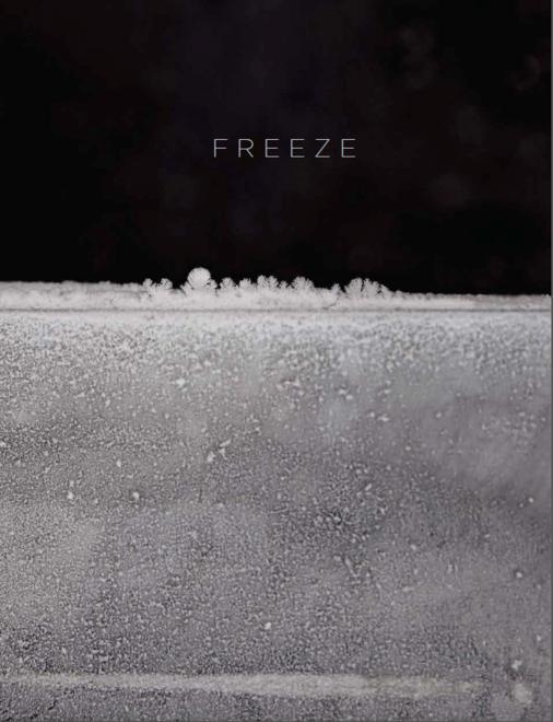 Paul Cocksedge: Freeze - Publication