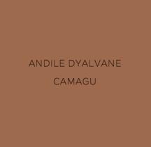 Andile Dyalvane: Camagu - Publications