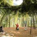 Nature: Design Triennial - Exhibitions