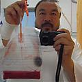 Ai Weiwei Interview
