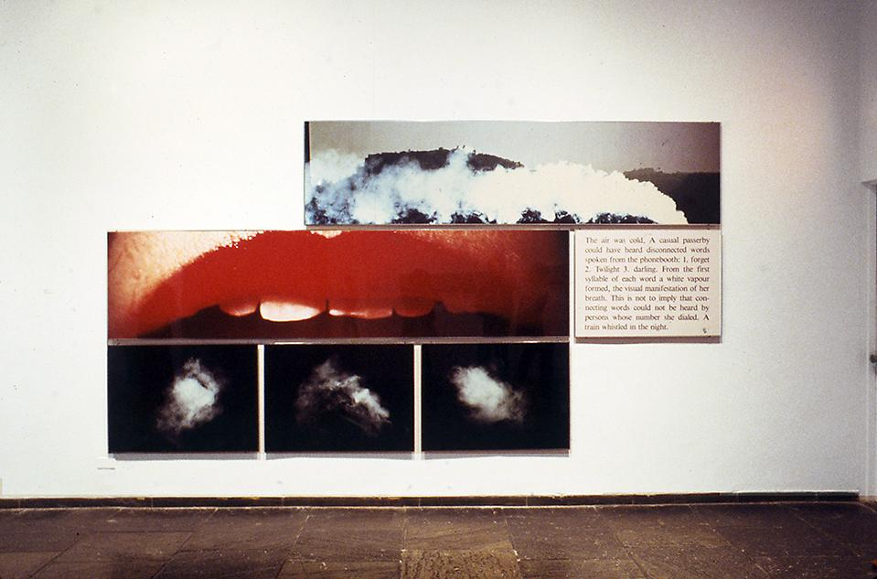 Image World: Art and Media Culture,The Whitn...